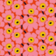 Ladybug43's picture